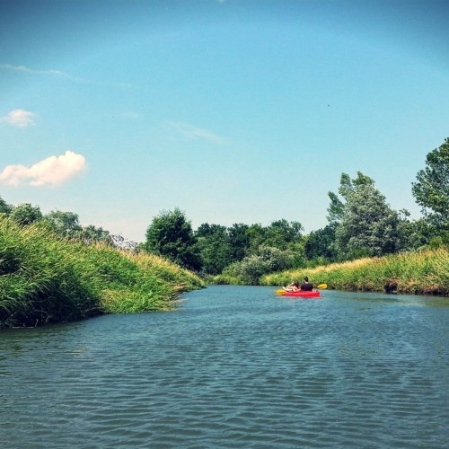 Spływy weekendowe
